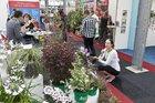 Stimulans voor kwekersdeelname