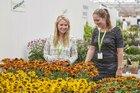 Plantarium 2019 speelt in op ontwikkeling  compact wonen/recreëren in groene omgeving