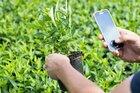 Groeien met Plantarium & Varb