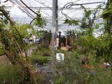 Plantarium breidt uit