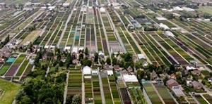 Greenport Boskoop stimuleert kwekersplein op Plantarium