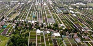 Greenport Boskoop fördert Züchterplatz auf der Plantarium