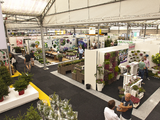 Plantarium retains international character