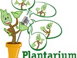 Plantarium 2013 trekt record aantal buitenlands vakbezoek